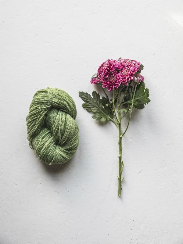 diy wolle nat rlich f rben mit chrysanthemen toll was blumen machen. Black Bedroom Furniture Sets. Home Design Ideas