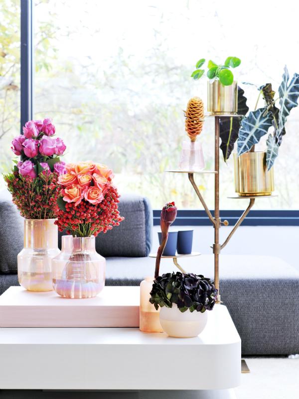 die rose eine bedeutungsvolle blume mit vielen facetten toll was blumen machen. Black Bedroom Furniture Sets. Home Design Ideas