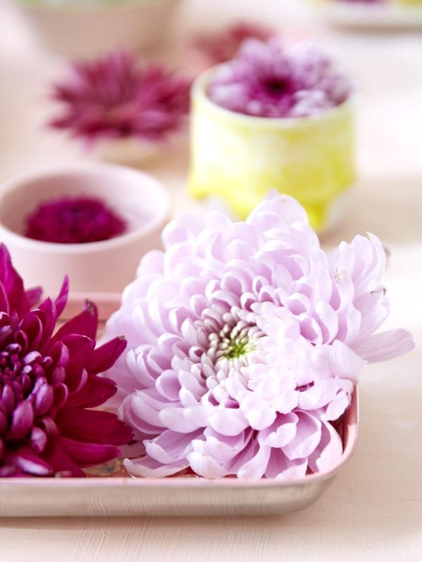 Chrysantheme - Tollwasblumenmachen.de/deco&style experts