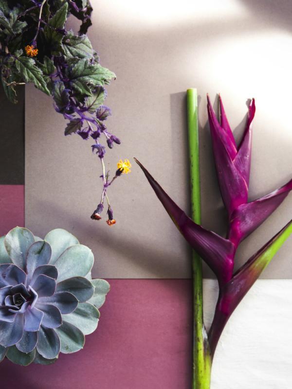 Grafische Blüten Tollwasblumenmachen.de